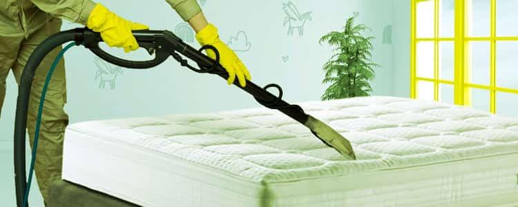 Expert Mattress Cleaning Ferntree Gully